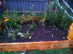 garden II