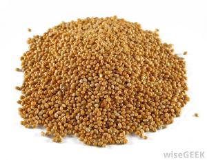 pile-of-sorghum-grain