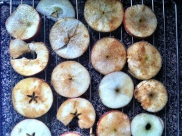 Apple Chips III
