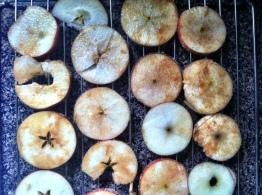 Apple Chips III