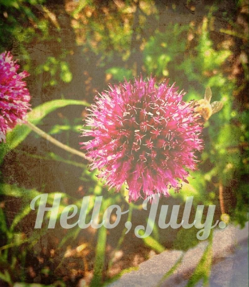 Hello July.VINTAGE