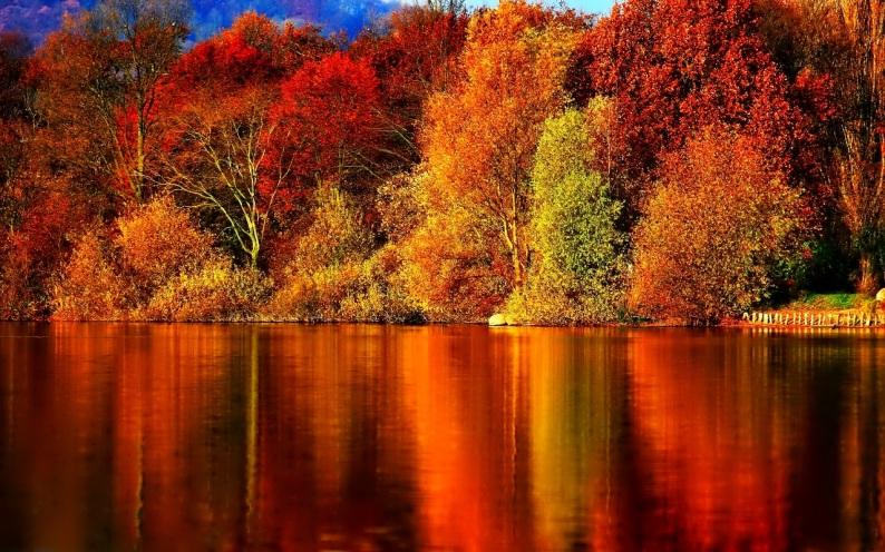 Autumn-Wallpaper-autumn-35867784-1280-800