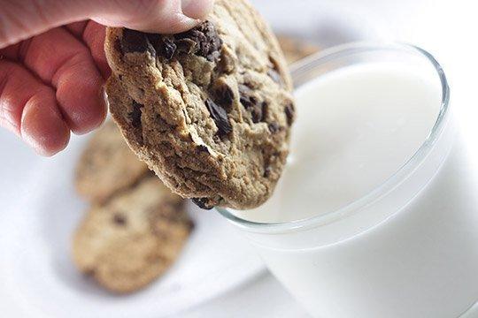 cookie in milk