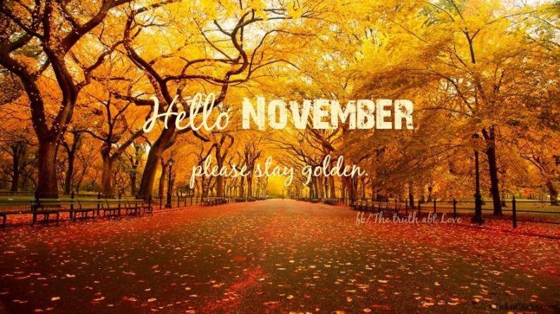 135886-hello-november