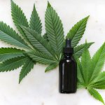 cbd oil bottle and cannbis leaf in white background